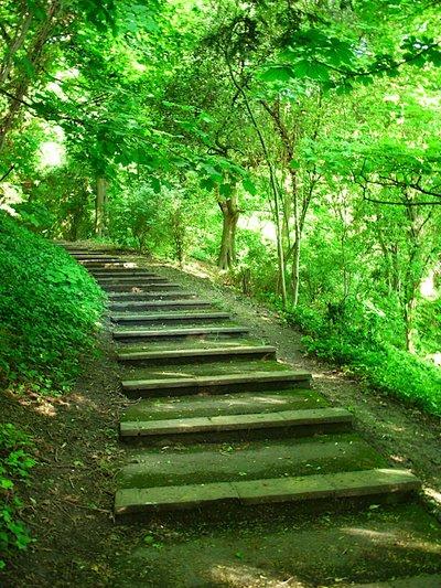 Green_path